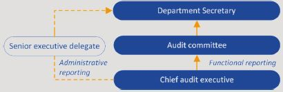 Diagram showing the position of the chief audit executive