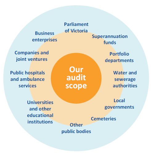 List of types of entities that VAGO audits