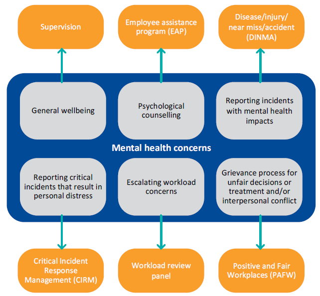 Flowchart showing Avenues for CPPs to raise mental health concerns