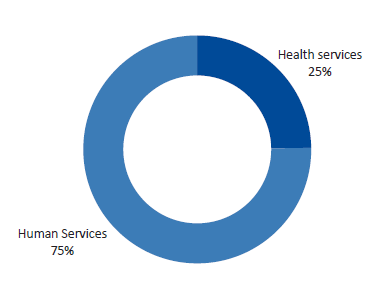 Figure E1 displays Question 1: What services does DHHS mainly fund your organisations for?