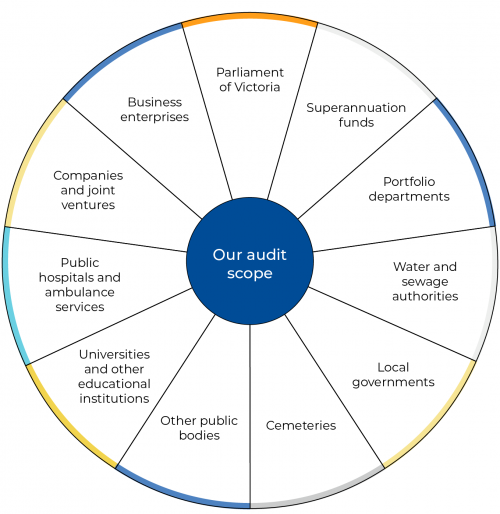 Financial audit program scope