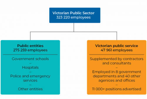 Figure 1A VPS workforce 2018–19
