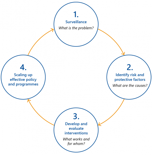 FIGURE 1C: The steps of a public health approach to interventions