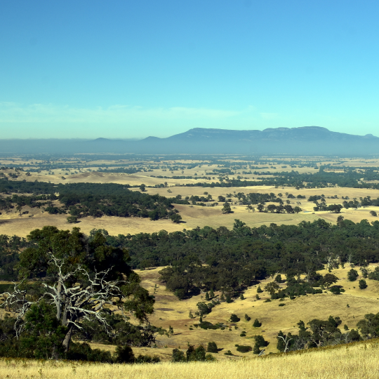 Early morning View from One Tree Hill Lookout (Ararat, VIC Australia). Broad panorama of the countryside in Western District of Victoria. Photo courtesy of katacarix/shutterstock.com
